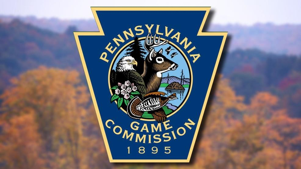 Over 2,000 acres added to Cambria County state game lands | WJAC